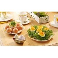 Wielkanoc - Talerze i kieliszki na jajka